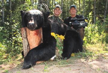Bear_82709