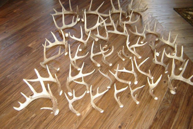 Sheds bluff bucks outfitters hunting wisconsin