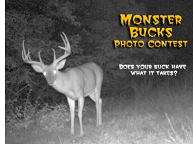 Monster Buck Contest