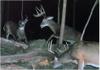 Deerhunting12212007b_2