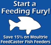 Pond Fish Feeder Special